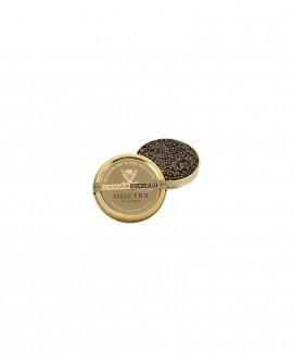 Caviale Osietra Classic - 10g - cartone nr.12 pezzi - Caviar Giaveri